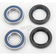 Front Wheel Bearing Kit - A25-1092