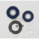 Rear Wheel Bearing Kit - A25-1191