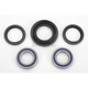 Rear Wheel Bearing Kit - A25-1029