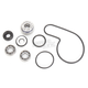 Water Pump Repair Kit - WPK0053