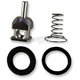 Fuel Check Valve Rebuild Kit - MC300