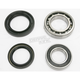 Rear Wheel Bearing Kit - PWRWK-Y21-040
