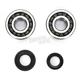 Crank Bearing and Seal Kit - 23.CBS11085