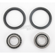 Front Wheel Bearing Kit - A25-1006