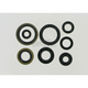 Oil Seal Set - M822125
