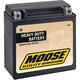 Non-Spillable 12-Volt Battery - 2113-0049