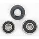 Rear Wheel Bearing Kit - PWRWK-K11-006
