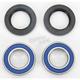 Rear Wheel Bearing Kit - 0215-0077