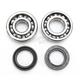 Crank Bearing Kit - 0924-0216