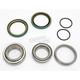 Rear Wheel Bearing Kit - PWRWK-P01-042