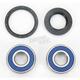 Wheel Bearing and Seal Kit - 25-1380