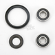 Front Wheel Bearing Kit - PWFWK-K06-020