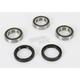 Rear Wheel Bearing Kit - PWRWK-Y09-421
