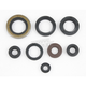 Engine Oil Seal Set - 50-2041