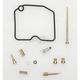 Carburetor Rebuild Kit - 1003-0029