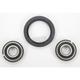 Front Wheel Bearing Kit - A25-1046