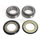 Steering Stem Bearing Kit - 203-0005