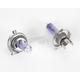 Xenon Purple Bulb - BL-43P100Z2