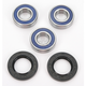 Rear Wheel Bearing Kit - A25-1271