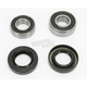 Rear Wheel Bearing Kit - PWRWK-Y25-008