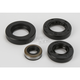 Oil Seal Kit - 0935-0391