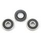 Rear Wheel Bearing Kit - PWRWK-Y29-001