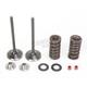 Intake Valve Kit - 0926-2427