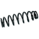 Rear Heavy-Duty Suspension Springs - WE321519