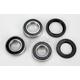 Rear Wheel Bearing and Seal Kit - PWRWS-K04-000