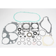 Complete Gasket Set with Oil Seals - 0934-0119