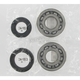 Crank Bearing/Seal Kit - A24-1005