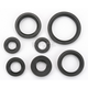 Oil Seal Set - 0935-0025