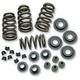 .650 in. Valve Spring Kit - 106-5909