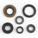 Engine Oil Seal Set - 50-1046