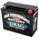 High Performance 12-Volt AGM Battery - 2113-0013