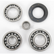 Rear ATV Differential Bearing - A25-2020