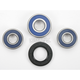 Rear Wheel Bearing Kit - A25-1231