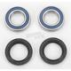 Front Wheel Bearing Kit - A25-1081