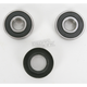 Rear Wheel Bearing Kit - PWRWS-H36-000