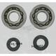 Crank Bearing/Seal Kit - 0924-0007
