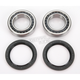 Rear Wheel Bearing Kit - A25-1151
