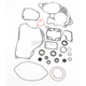 Complete Gasket Set with Oil Seals - M811549