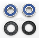 Wheel Bearing and Seal Kit - 25-1382
