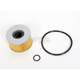 Oil Filter - CH6007
