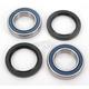Rear Wheel Bearing Kit - A25-1132