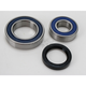 Bearing and Seal Kit - 14-1044