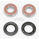 Rear Wheel Bearing Kit - PWRWK-K05-521