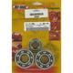 Main Bearing and Seal Kit - K006