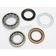 Rear Wheel Bearing Kit - PWRWK-Y11-030