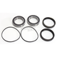 Rear Wheel Bearing Kit - 301-0098